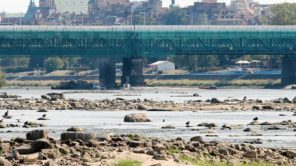 Czytaj więcej o: Plany przeciwdziałania skutkom suszy